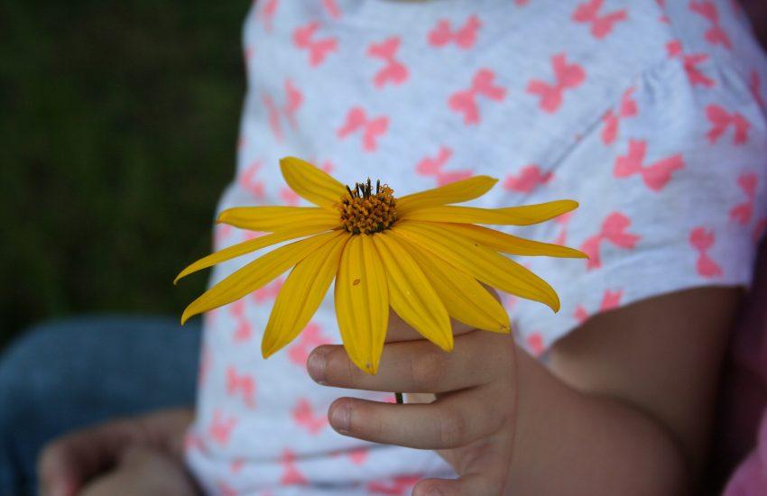Tuindecoratie en tuinaccessoires voor kinderen